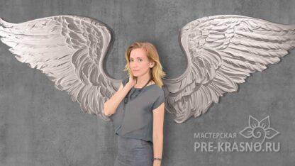 Девушка крылья ангела